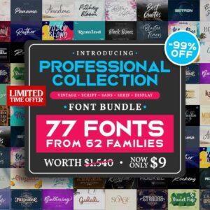 Professional Collection Font Bundle